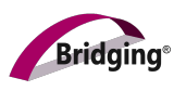 Begeleidingsmethodiek Bridging