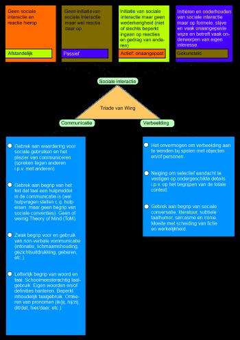 De gevolgen van autisme weergegeven in een kort schema